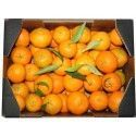 Clementines 5 Kg [First shipment: 5/11/2018]
