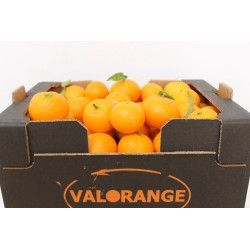Clementines 10 Kg OUT OF STOCK