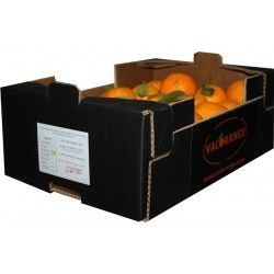 Lane Late oranges. 5 Kilos. Shipment included